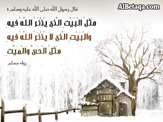 Ebadat0094