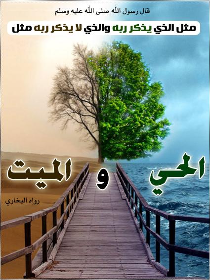Ebadat0522