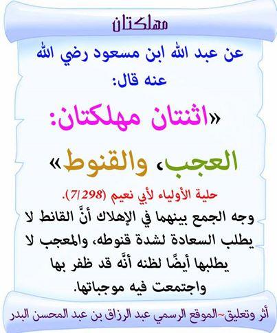 10151342_509036059208263_263636426_n