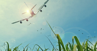 aircraft_fields_sun_sky-wide