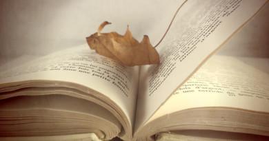 Blog_Idiom_Take-a-Leaf-out1