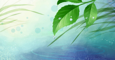 5496-waterdrops-on-leaves-1920x1080-digital-art-wallpaper