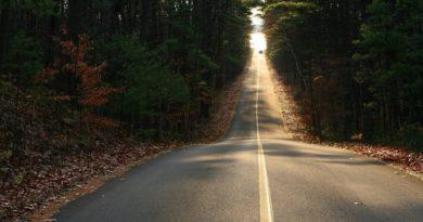 road_autumn_leaves_straight_line_descent_car_movement_53444_1920x1200