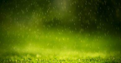 Beautiful-Rain-Drop-Water-On-The-Grass-Wallpaper-Background