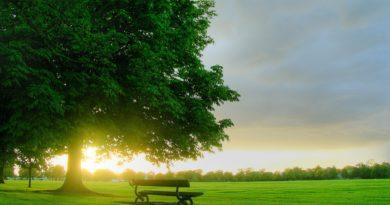 sunrise_on_a_green_field_freecomputerdesktopwallpaper_1920