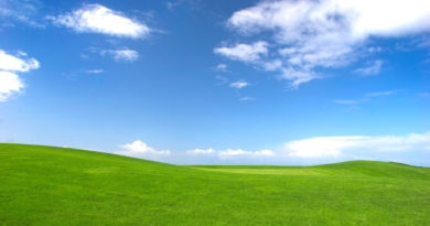 grass-and-sky-wallpaper-20