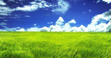 grass-green-land-super-hq-1290506