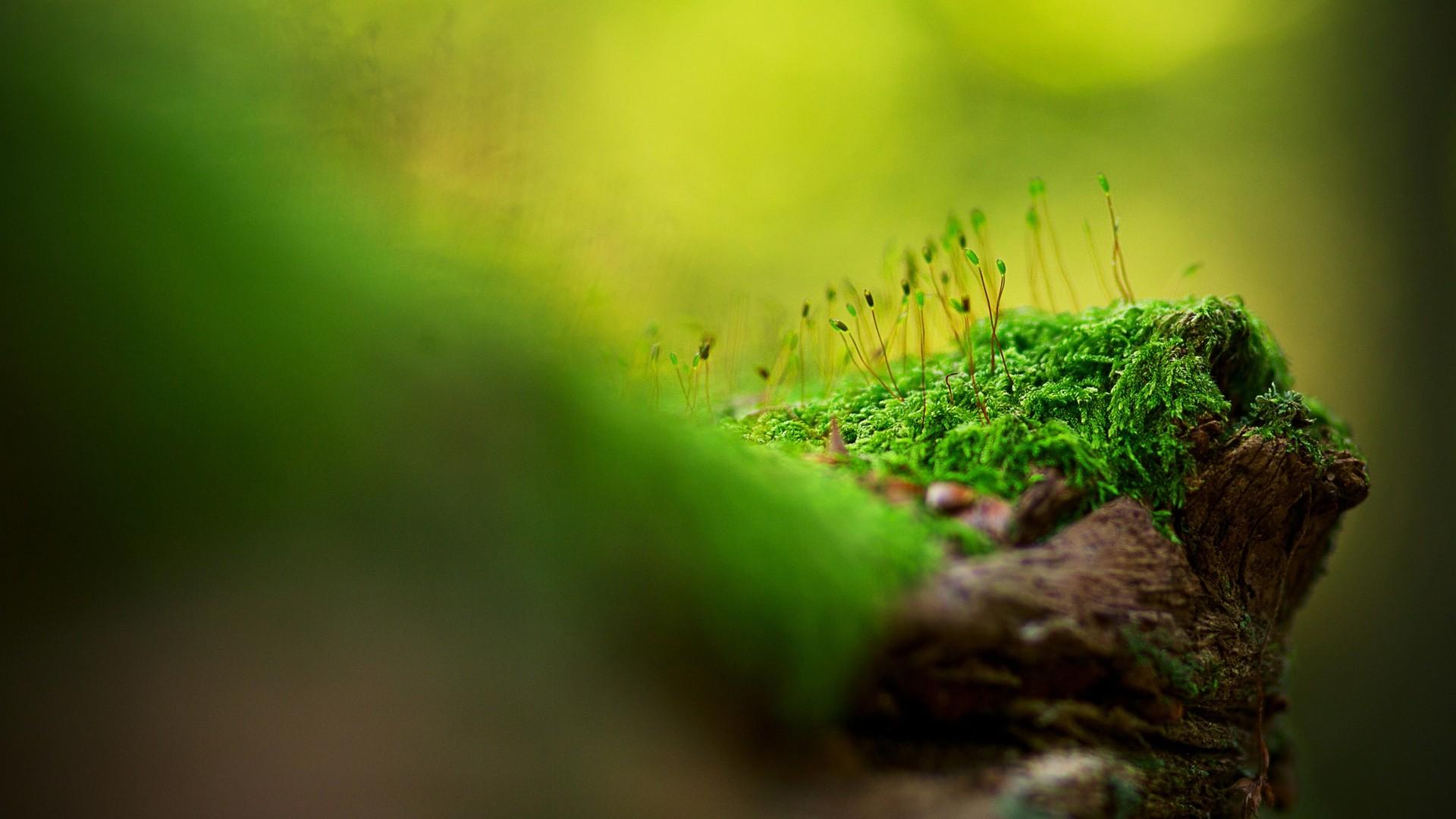 Kebutuhan Pokok Yang Terlupakan