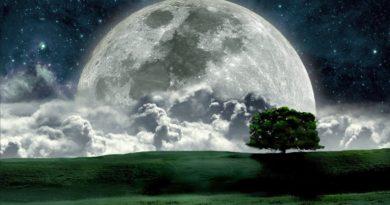 Bulan Yang Dinanti